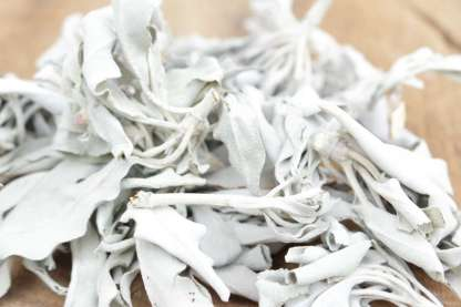 energetisch reinigen witte salie